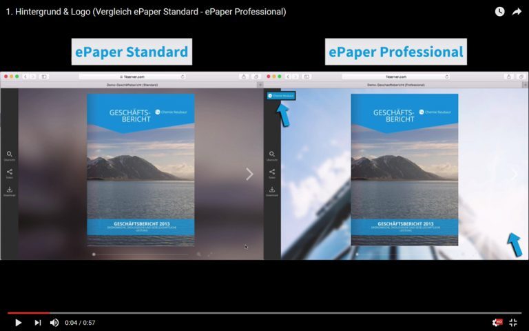 Der große ePaper Vergleich: ePaper Standard – ePaper Professional